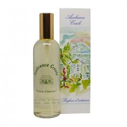 Parfums des îles parfum d'intérieur ambiance créole flèche de canne spray 100ml