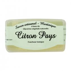 Parfums des îles savon au Citron pays 100g
