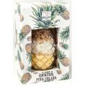 Quai Sud mélange pour rhum arrangé Ananas-Coco 215 g en verre cocktail