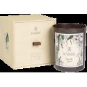 LIGNE ST BARTH Bougie Parfumée Vanilla Spirit  180g